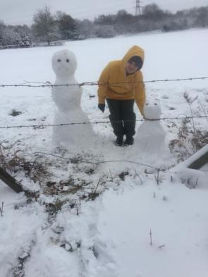 snowmandog